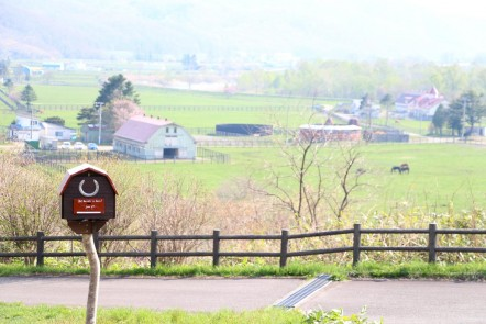 牧場と IMG_6685