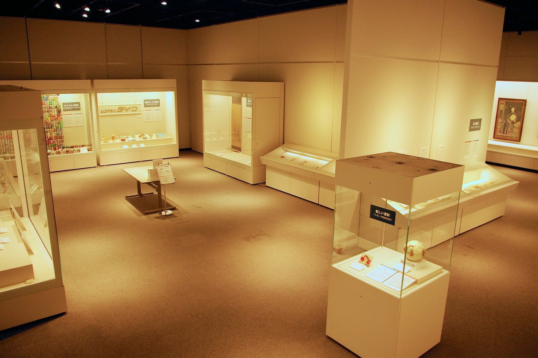 「博物館行き」(2013年)と題した収蔵品展の展示室風景。海岸でひろった資料やアイドル歌手のCDなど、博物館の意外な収集活動を紹介。