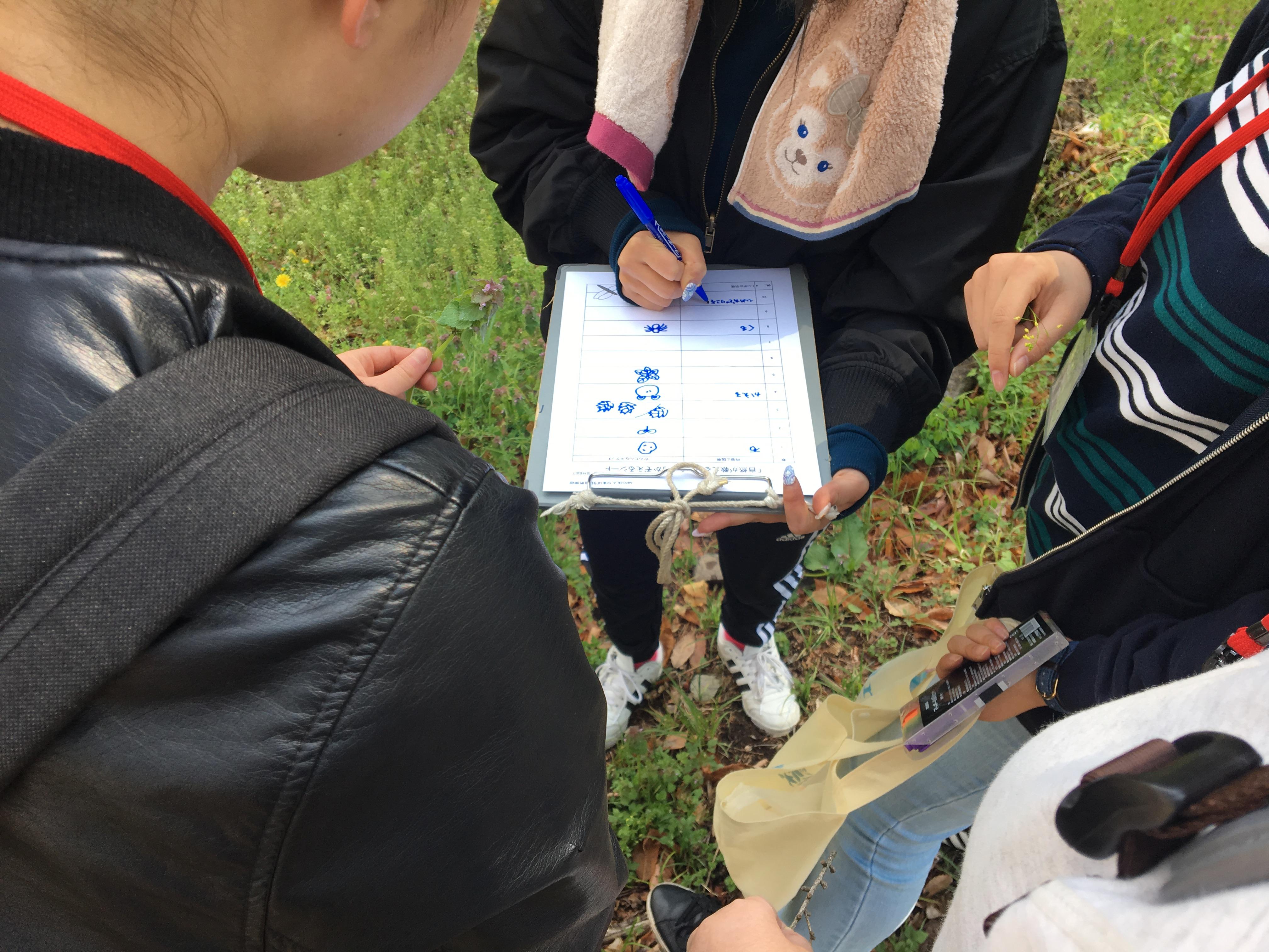 自然体験学習をする学生たち。