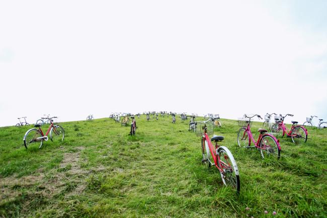 登りながら長く見ていると、「自転車置き場か」という思いもよぎる
