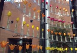 チューリップ四季彩館の展示。チューリップはすべて本物です。
