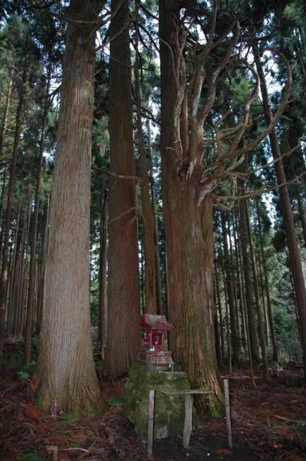 タタラ製鉄が行われていた永昌山鉄山に残された金屋児神社。製鉄の守護神を祀っている(写真提供:西粟倉村役場 )