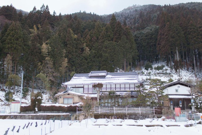 村には、150年級の素晴らしい森林を裏山に持つ旧家もあるという