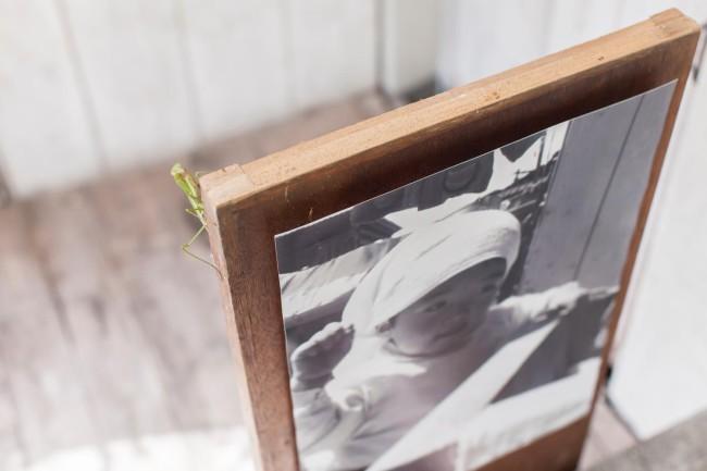 「おみおくりプロジェクト」展にて。庭に置かれた幼少の伊達さんの写真展示に、カマキリがやってきた