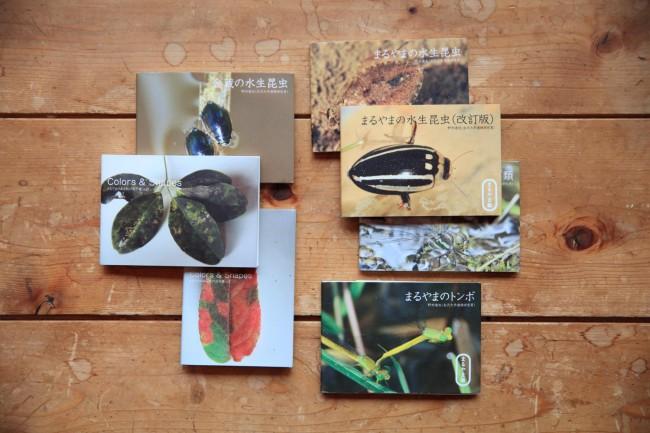 (上)伊藤先生たちと「まるやまあるき」で採集した植物標本(下)野村先生がまとめた水生昆虫の図鑑の数々