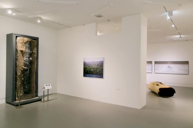 そのコラボレーション部分。左は、約4万年前の火山によってそのまま「パックされ、熱で蒸し焼きになったもの」。1984年に発掘された炭化木。右の、くりぬかれた木の立体は国松希根太「WORMHOLE」(2017)。奥は国松のアクリル画