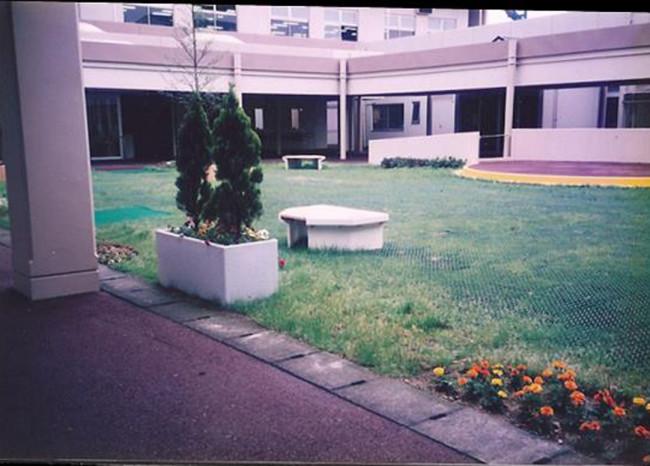 活動開始前の庭の様子