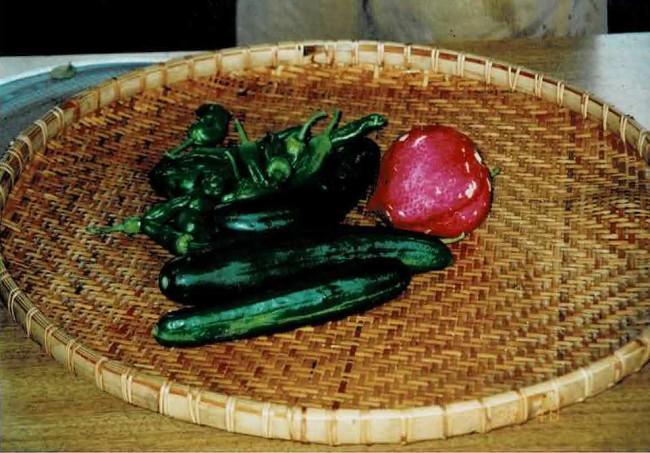 活動初期は少ししか収穫できなかった野菜