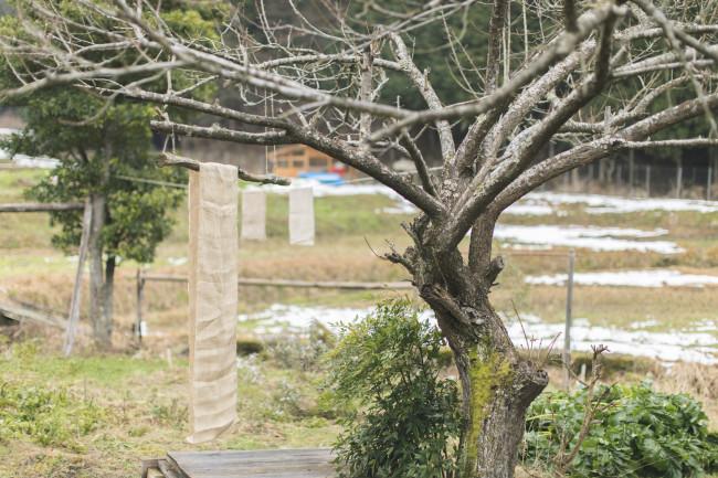 端切れや糸くずを服づくりに利用することも多い / 畑には小さな染物小屋が。栗皮や椿など、庭の植物を草木染めに使用する / 自作の竿で生地を晒す