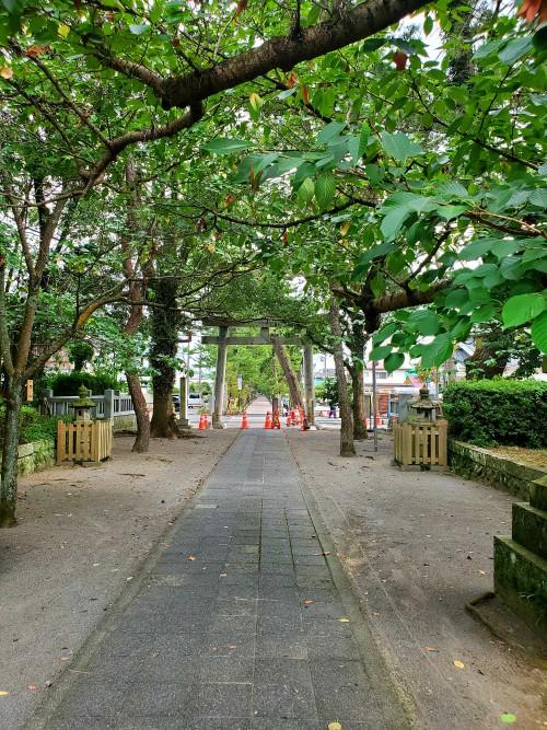 御穂神社境内から羽衣の松まで続く参道
