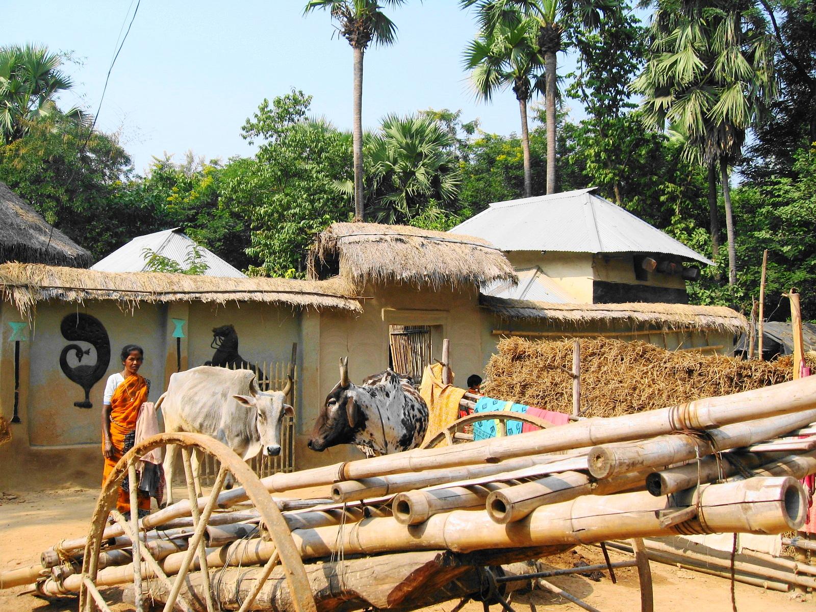 サンタル族の女性と家