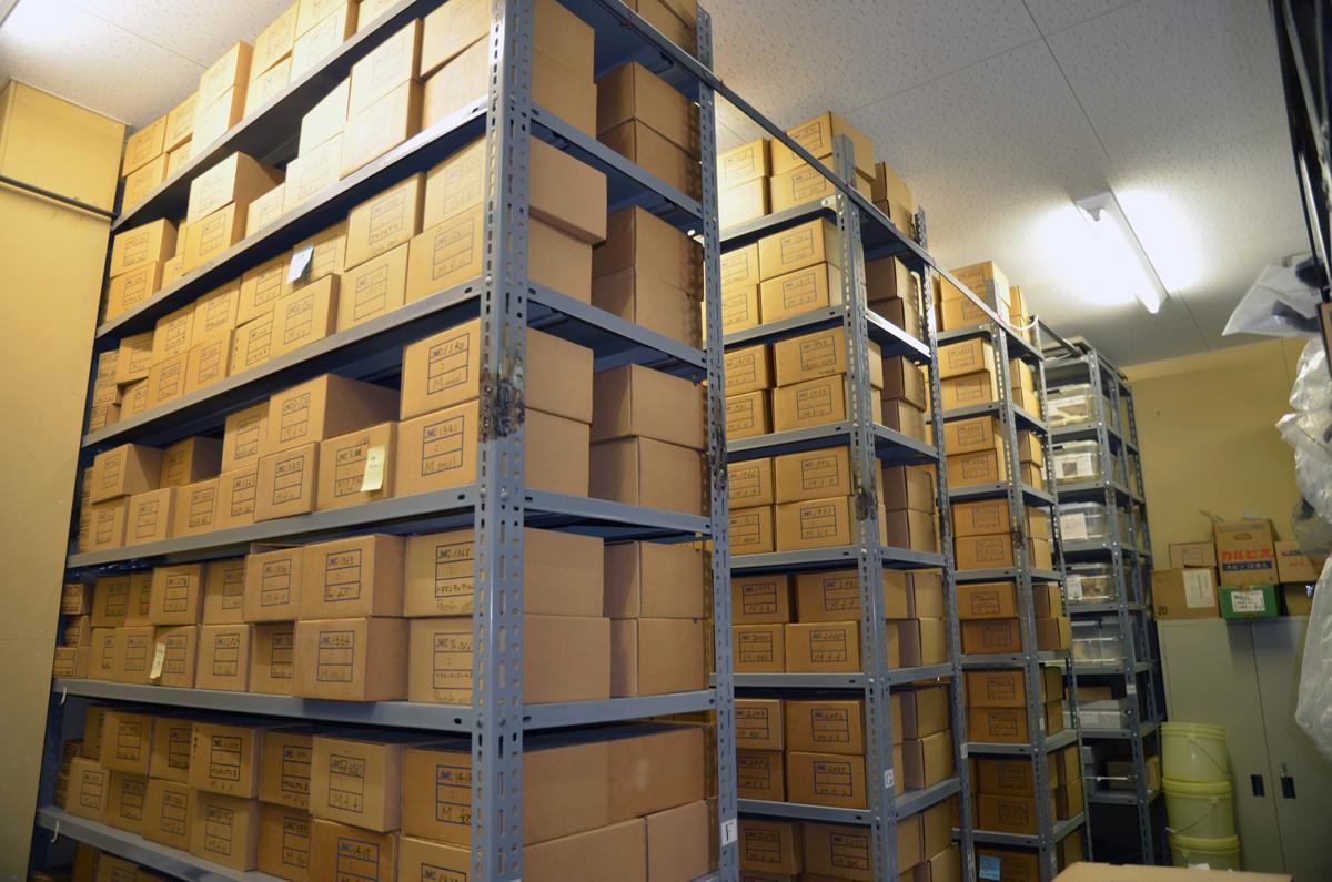 骨格標本の収蔵室。天井近くまである箱1つ1つに、それぞれ1頭分の骨格標本が収められている