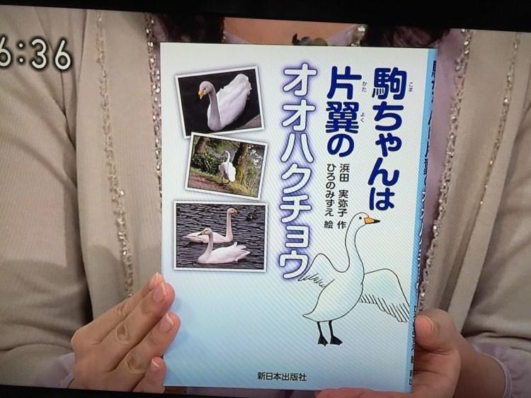 浜田さんが、周囲の人々と交流しながら観察を続けた、駒ちゃん。専門家の話を聞いたり調べたりしながら知識を深め、執筆をした。出版後は、さまざまなメディアで取り上げられたり、講演の機会を得たりしたそう