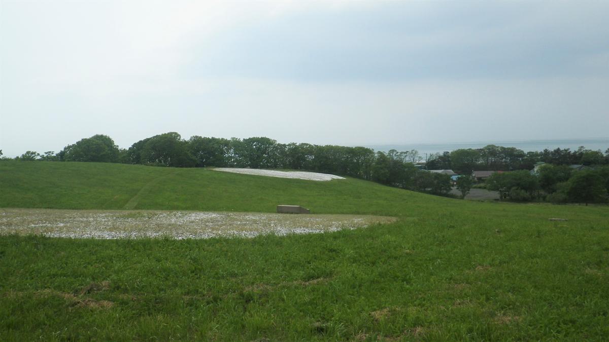 丘の風景。白く見える場所が貝塚跡です。のびのびとした丘はピクニックやソリ遊びにも最適です。キタキツネが横切ってゆく場面も